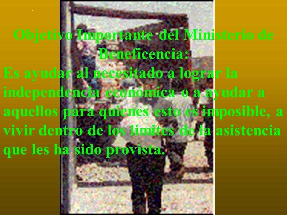 HAY NECESIDAD DEL MINISTERIO DE SALUD Y BENEFICENCIA Las instituciones sostenidas por el gobierno algunas veces son restringidas y a menudo no pueden