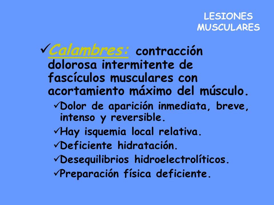 LESIONES MUSCULARES Calambres: contracción dolorosa intermitente de fascículos musculares con acortamiento máximo del músculo. Dolor de aparición inme