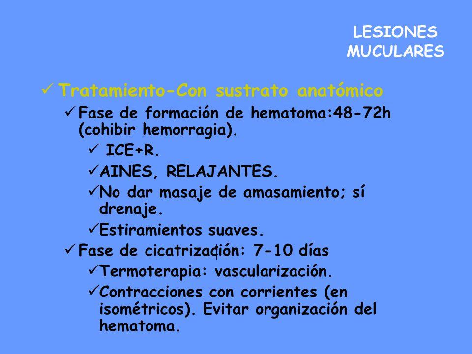 LESIONES MUCULARES Tratamiento-Con sustrato anatómico Fase de formación de hematoma:48-72h (cohibir hemorragia). ICE+R. AINES, RELAJANTES. No dar masa