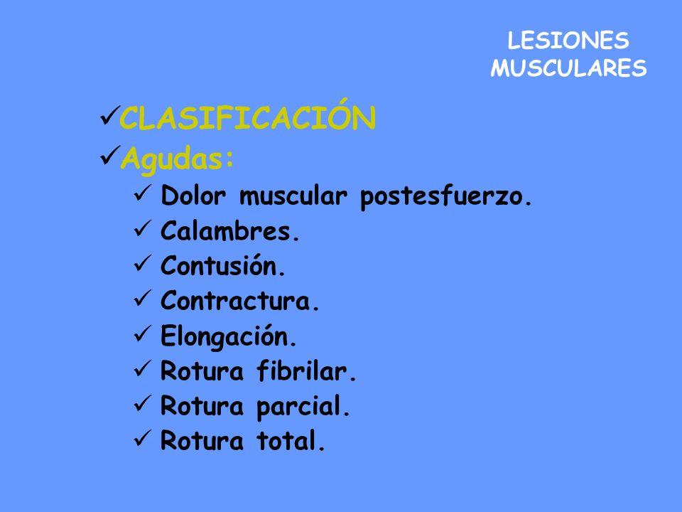 LESIONES MUCULARES Tratamiento-Con sustrato anatómico Fase de formación de hematoma:48-72h (cohibir hemorragia).