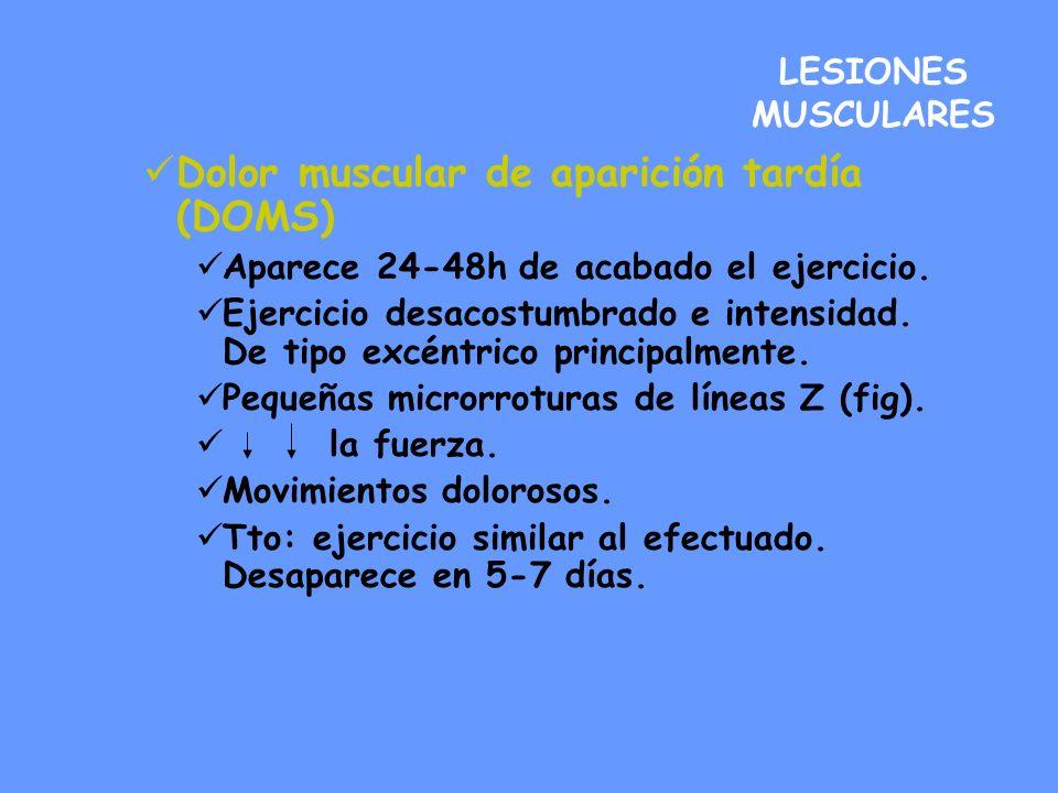 LESIONES MUSCULARES Dolor muscular de aparición tardía (DOMS) Aparece 24-48h de acabado el ejercicio. Ejercicio desacostumbrado e intensidad. De tipo