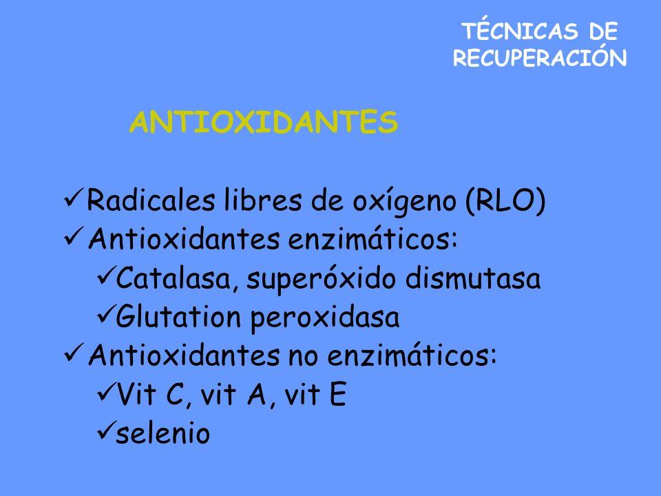 TÉCNICAS DE RECUPERACIÓN ANTIOXIDANTES Radicales libres de oxígeno (RLO) Antioxidantes enzimáticos: Catalasa, superóxido dismutasa Glutation peroxidasa Antioxidantes no enzimáticos: Vit C, vit A, vit E selenio