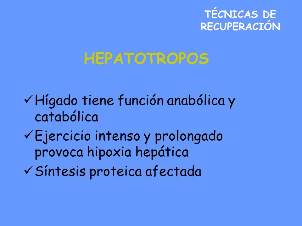 TÉCNICAS DE RECUPERACIÓN HEPATOTROPOS Hígado tiene función anabólica y catabólica Ejercicio intenso y prolongado provoca hipoxia hepática Síntesis proteica afectada