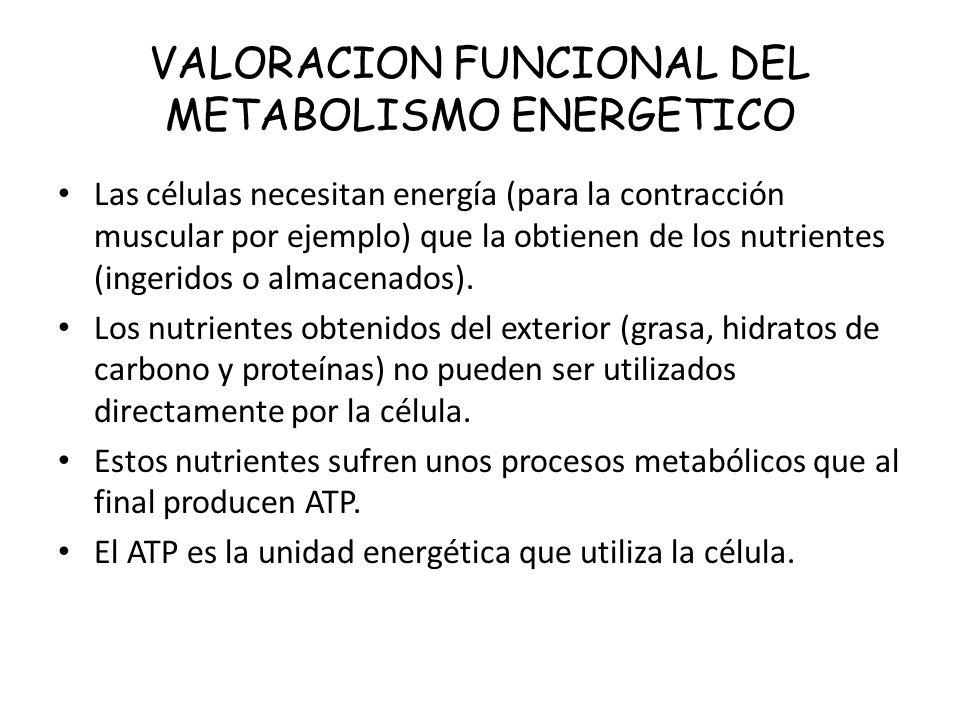 VALORACION FUNCIONAL DEL METABOLISMO ENERGETICO Las células necesitan energía (para la contracción muscular por ejemplo) que la obtienen de los nutrie