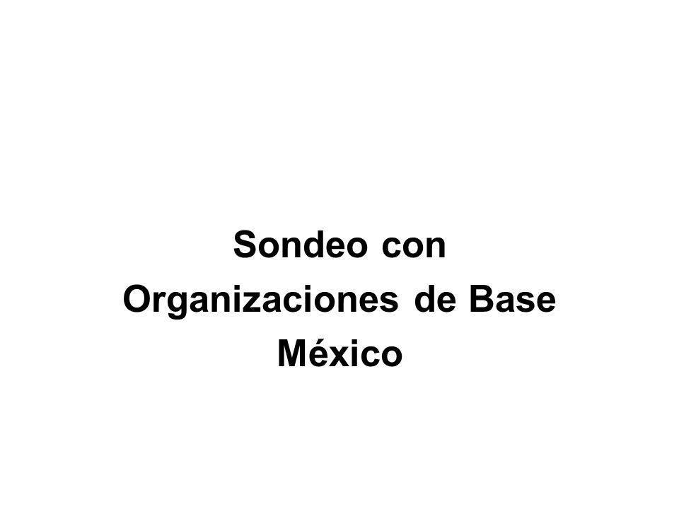 11 organizaciones en 7 Estados.