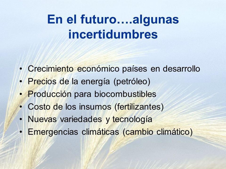 En el futuro….algunas incertidumbres Crecimiento económico países en desarrollo Precios de la energía (petróleo) Producción para biocombustibles Costo de los insumos (fertilizantes) Nuevas variedades y tecnología Emergencias climáticas (cambio climático)