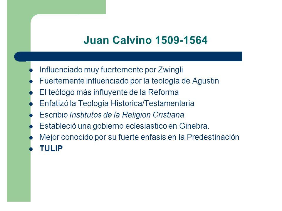 Juan Calvino 1509-1564 Influenciado muy fuertemente por Zwingli Fuertemente influenciado por la teología de Agustin El teólogo más influyente de la Reforma Enfatizó la Teología Historica/Testamentaria Escribio Institutos de la Religion Cristiana Estableció una gobierno eclesiastico en Ginebra.