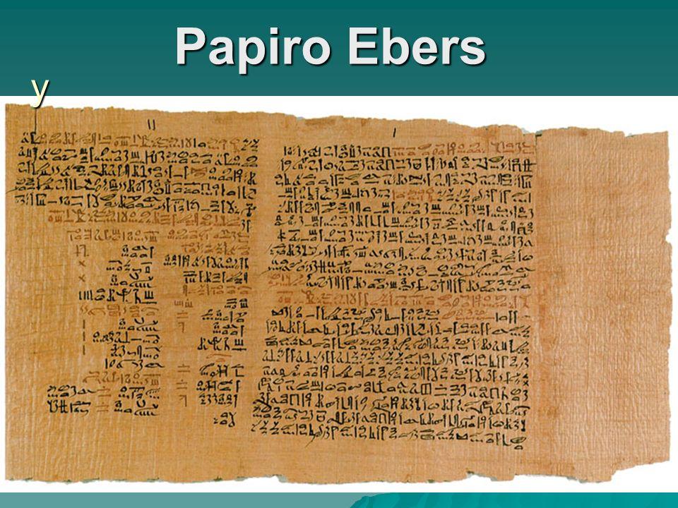 Papiro Ebers y