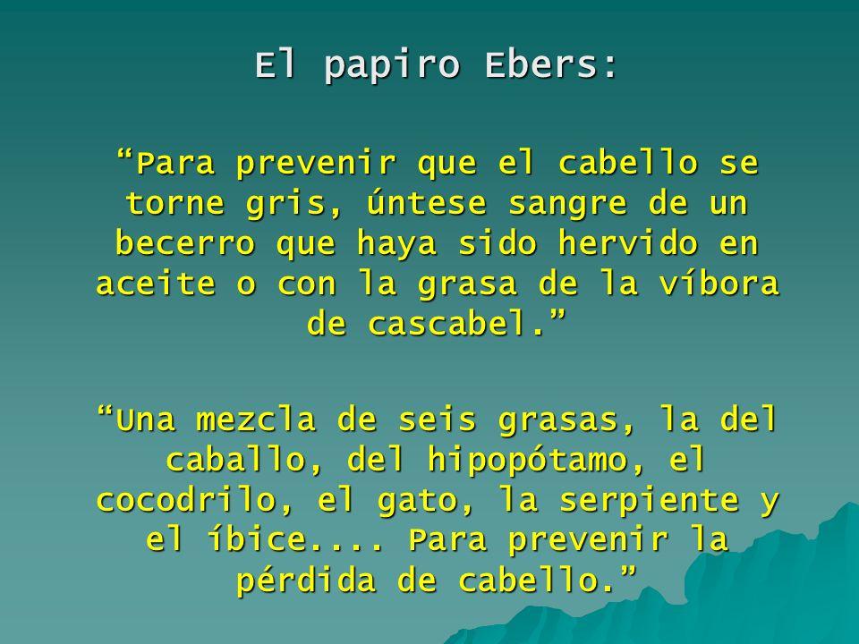 El papiro Ebers: Para prevenir que el cabello se torne gris, úntese sangre de un becerro que haya sido hervido en aceite o con la grasa de la víbora d