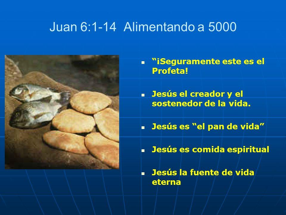 Juan 6:1-14 Alimentando a 5000 ¡Seguramente este es el Profeta! Jesús el creador y el sostenedor de la vida. Jesús es el pan de vida Jesús es comida e