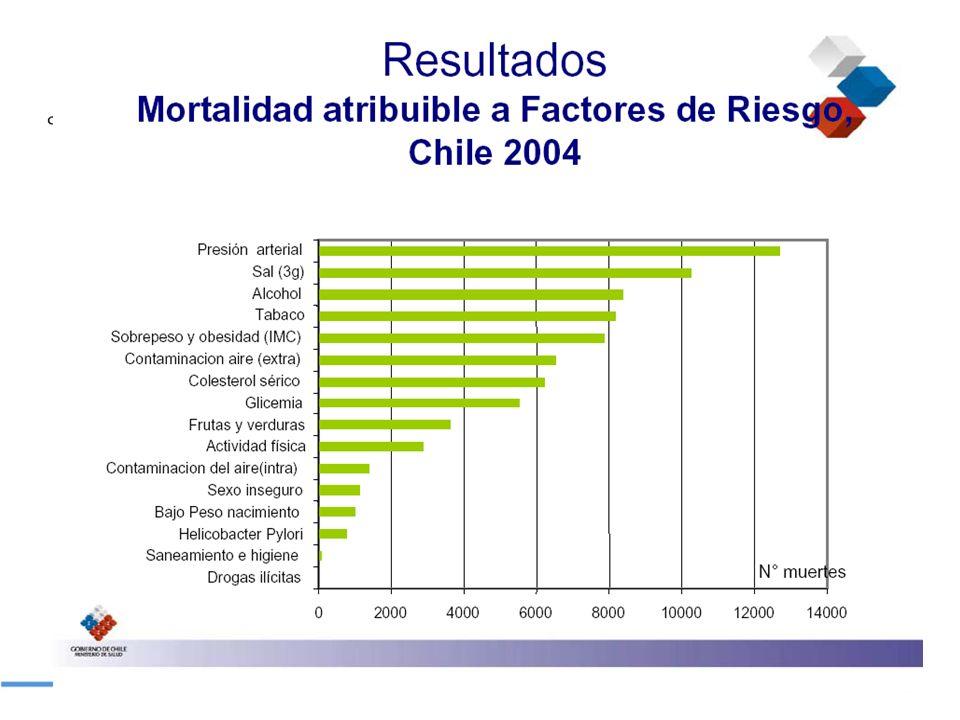 CHILE SALUD PUBLICA38 MINISTERIO DE SALUD PROGRAMA DE HIGIENE Y CONTROL DE ALIMENTOS AUTORIZACION DEFINITIVA INTERESADOAviso de arribo de mercadería a depósito.