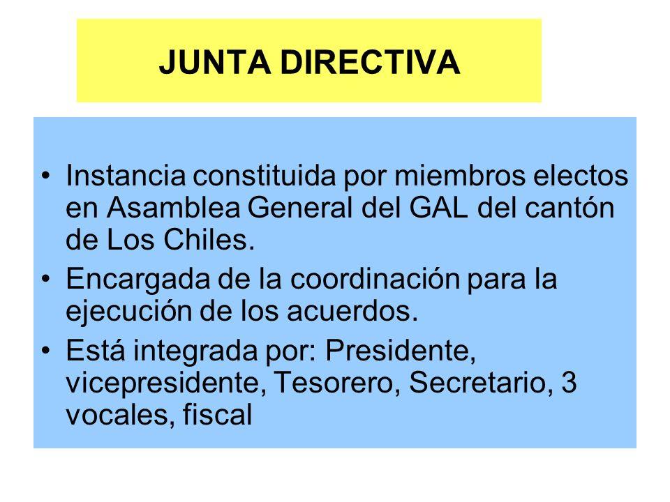 JUNTA DIRECTIVA Instancia constituida por miembros electos en Asamblea General del GAL del cantón de Los Chiles.
