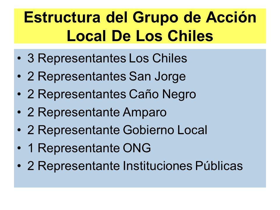 Estructura del Grupo de Acción Local De Los Chiles 3 Representantes Los Chiles 2 Representantes San Jorge 2 Representantes Caño Negro 2 Representante Amparo 2 Representante Gobierno Local 1 Representante ONG 2 Representante Instituciones Públicas