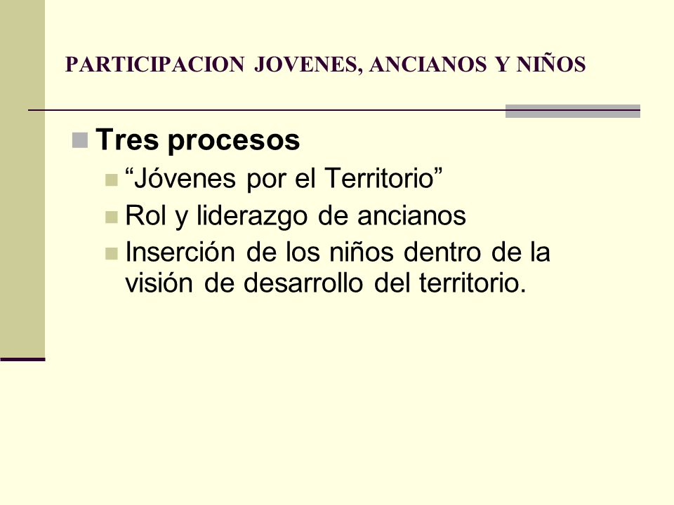 PARTICIPACION JOVENES, ANCIANOS Y NIÑOS Tres procesos Jóvenes por el Territorio Rol y liderazgo de ancianos Inserción de los niños dentro de la visión
