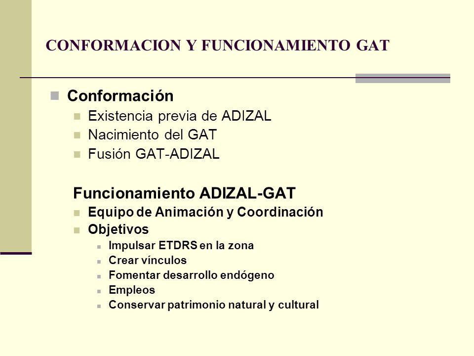CONFORMACION Y FUNCIONAMIENTO GAT Conformación Existencia previa de ADIZAL Nacimiento del GAT Fusión GAT-ADIZAL Funcionamiento ADIZAL-GAT Equipo de An