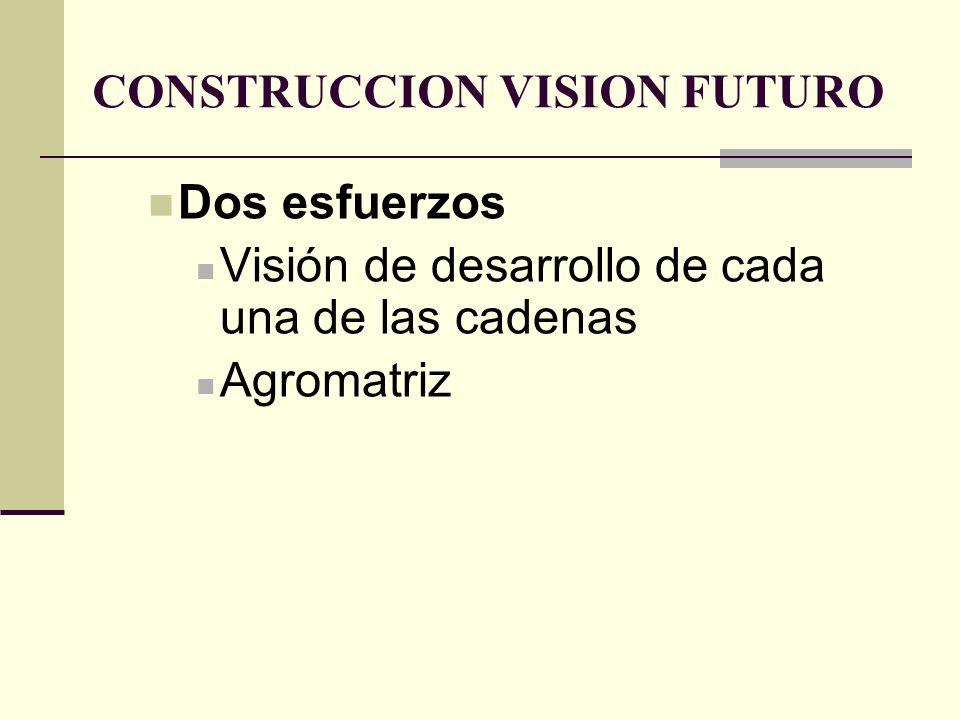 CONSTRUCCION VISION FUTURO Dos esfuerzos Visión de desarrollo de cada una de las cadenas Agromatriz