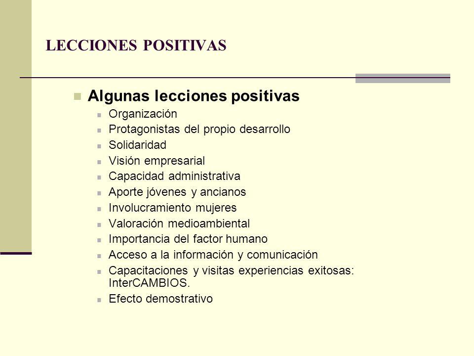 LECCIONES POSITIVAS Algunas lecciones positivas Organización Protagonistas del propio desarrollo Solidaridad Visión empresarial Capacidad administrati