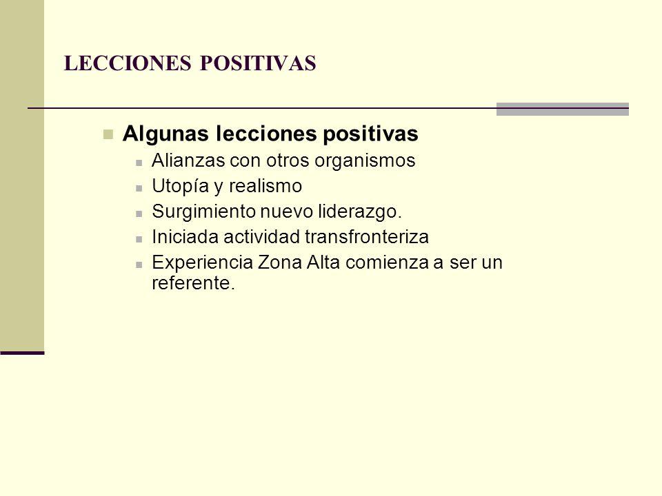LECCIONES POSITIVAS Algunas lecciones positivas Alianzas con otros organismos Utopía y realismo Surgimiento nuevo liderazgo. Iniciada actividad transf