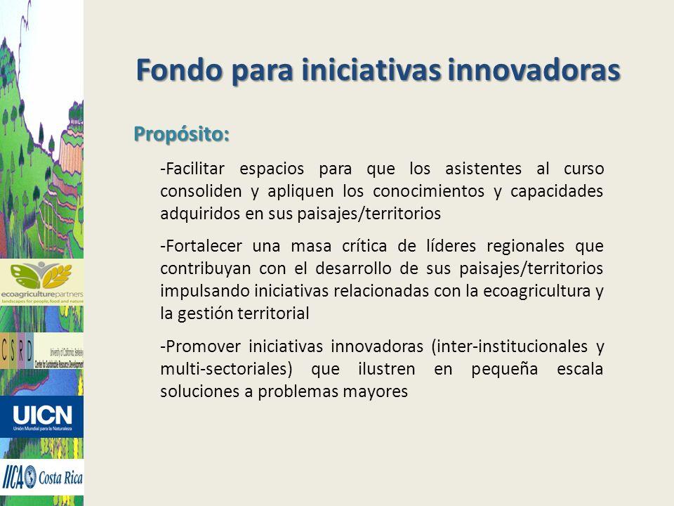 Fondo para iniciativas innovadoras Propósito: -Facilitar espacios para que los asistentes al curso consoliden y apliquen los conocimientos y capacidad