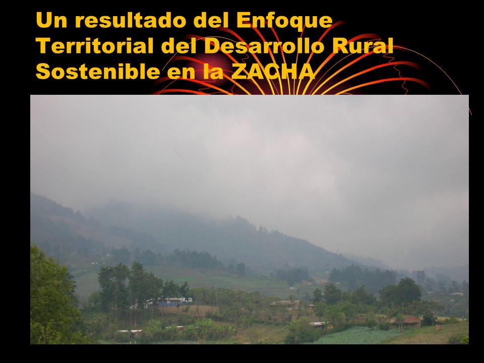 En el 2006 inicia la experiencia de Desarrollo Rural con Enfoque Territorial en la ZACHA, a través de un proceso participativo