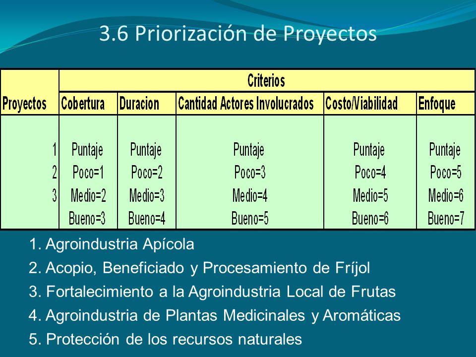 3.6 Priorización de Proyectos 1. Agroindustria Apícola 2. Acopio, Beneficiado y Procesamiento de Fríjol 3. Fortalecimiento a la Agroindustria Local de