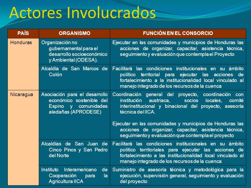 Actores Involucrados PAÍSORGANISMOFUNCIÓN EN EL CONSORCIO HondurasOrganización no gubernamental para el desarrollo socioeconómico y Ambiental (ODESA).