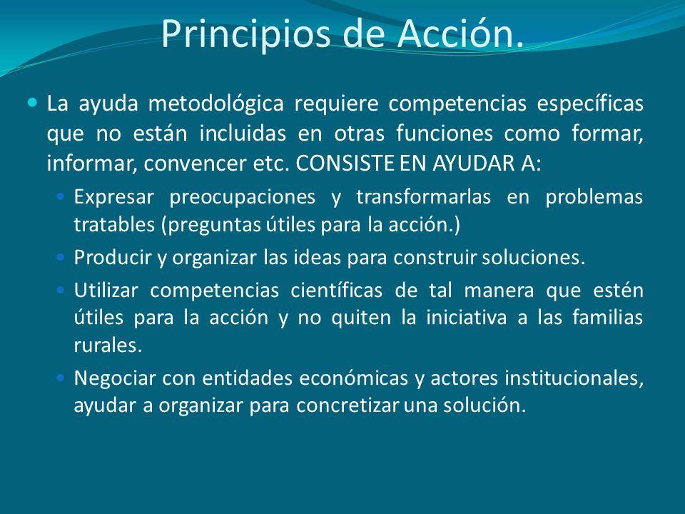 Principios de Acción. La ayuda metodológica requiere competencias específicas que no están incluidas en otras funciones como formar, informar, convenc