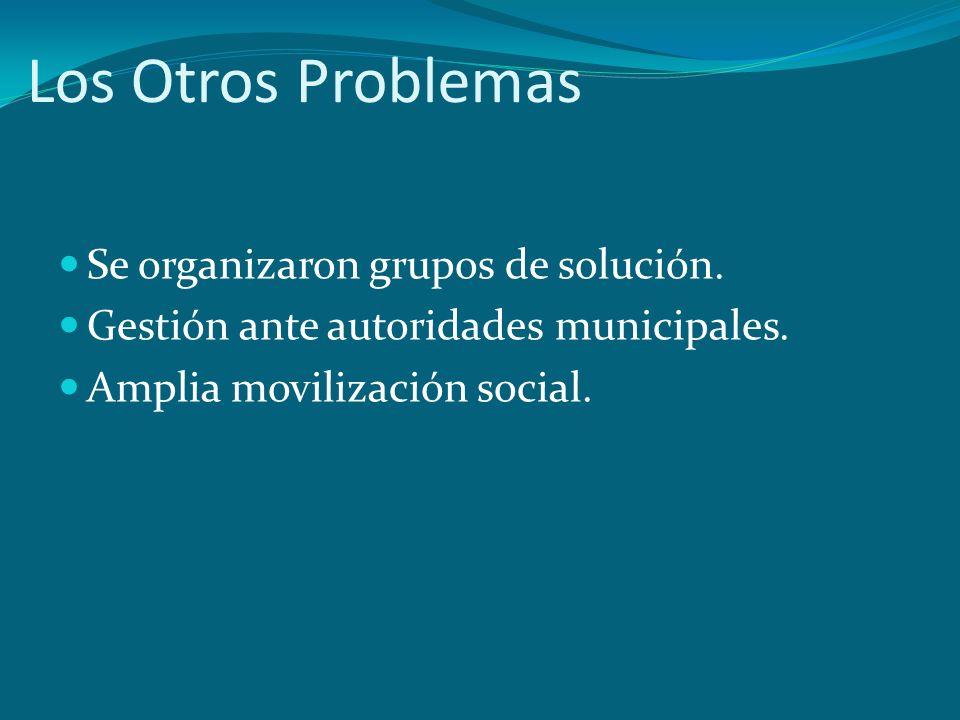 Los Otros Problemas Se organizaron grupos de solución. Gestión ante autoridades municipales. Amplia movilización social.