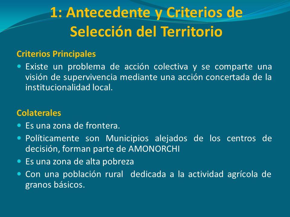1: Antecedente y Criterios de Selección del Territorio Criterios Principales Existe un problema de acción colectiva y se comparte una visión de superv