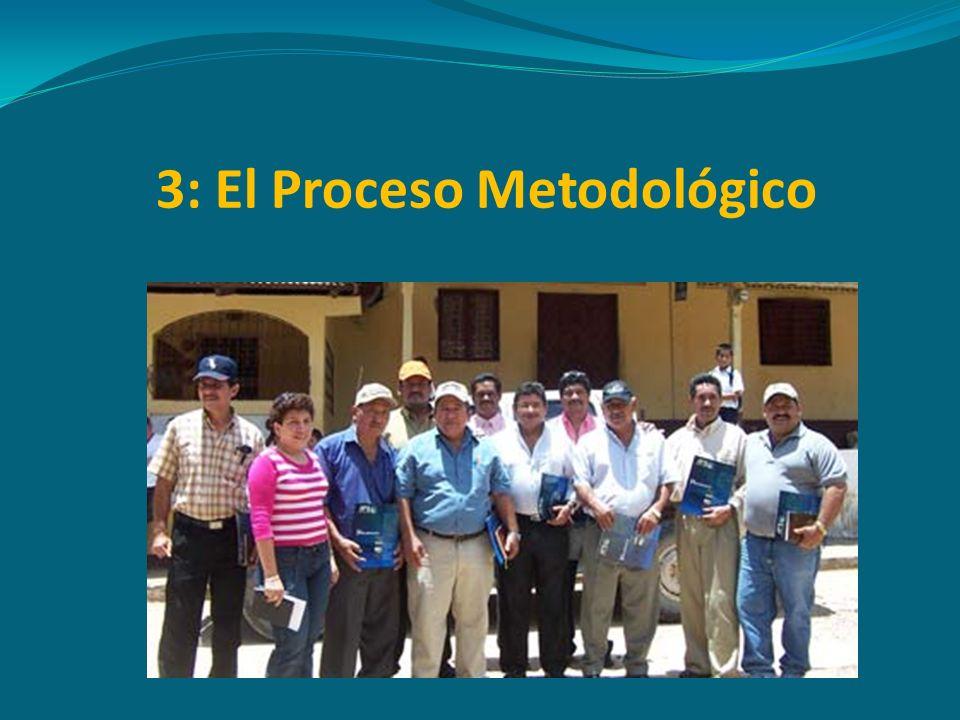 3: El Proceso Metodológico
