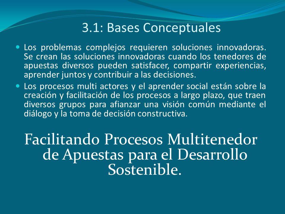 3.2: La conformación de una plataforma institucional interesada en el desarrollo de la zona Organización Gobierno Locales Org.