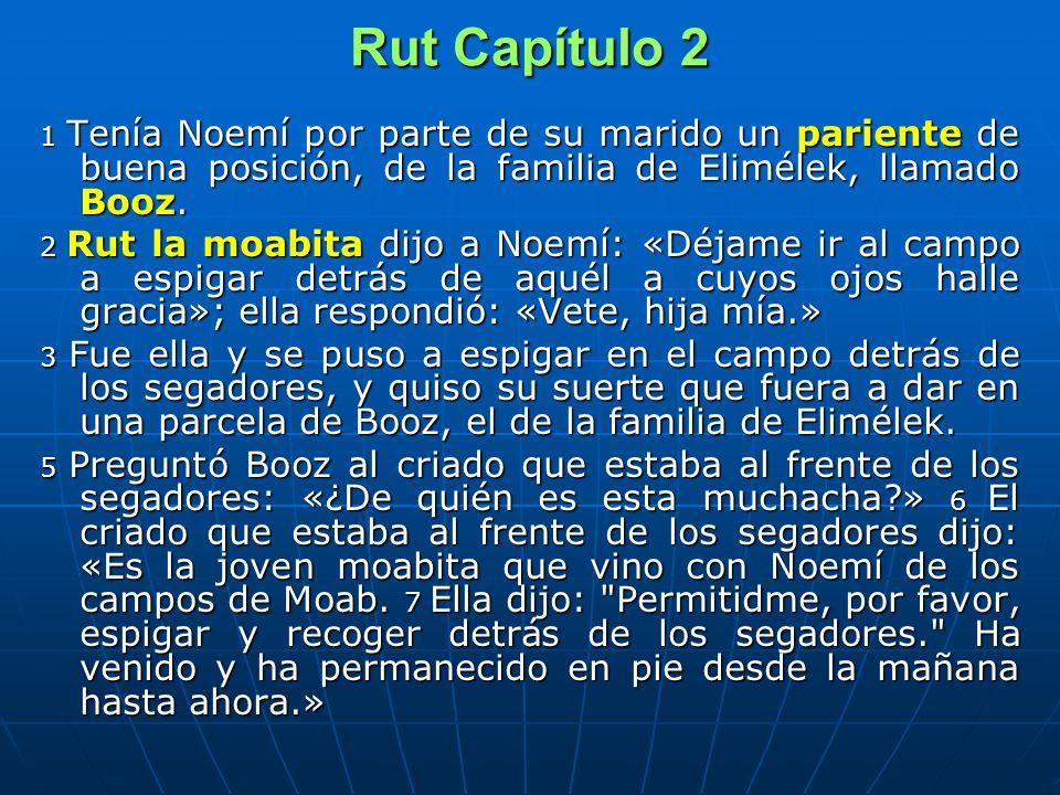 Rut Capítulo 2 1 Tenía Noemí por parte de su marido un pariente de buena posición, de la familia de Elimélek, llamado Booz. 2 Rut la moabita dijo a No