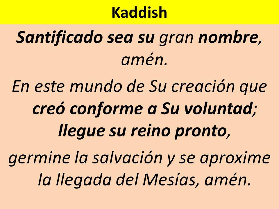 Kaddish Santificado sea su gran nombre, amén. En este mundo de Su creación que creó conforme a Su voluntad; llegue su reino pronto, germine la salvaci