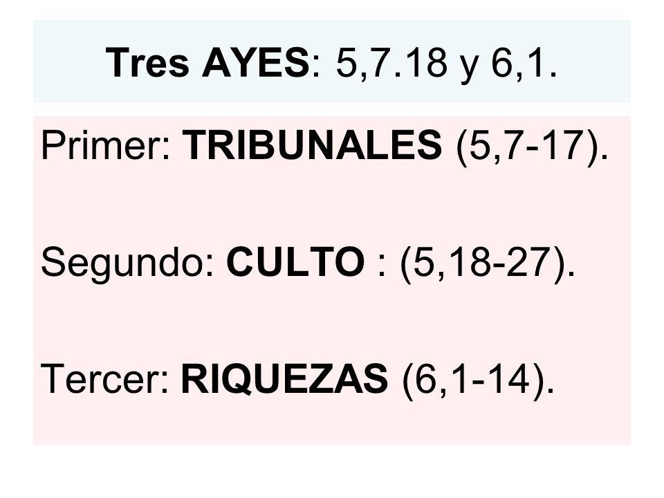 Tres AYES: 5,7.18 y 6,1.Primer: TRIBUNALES (5,7-17).