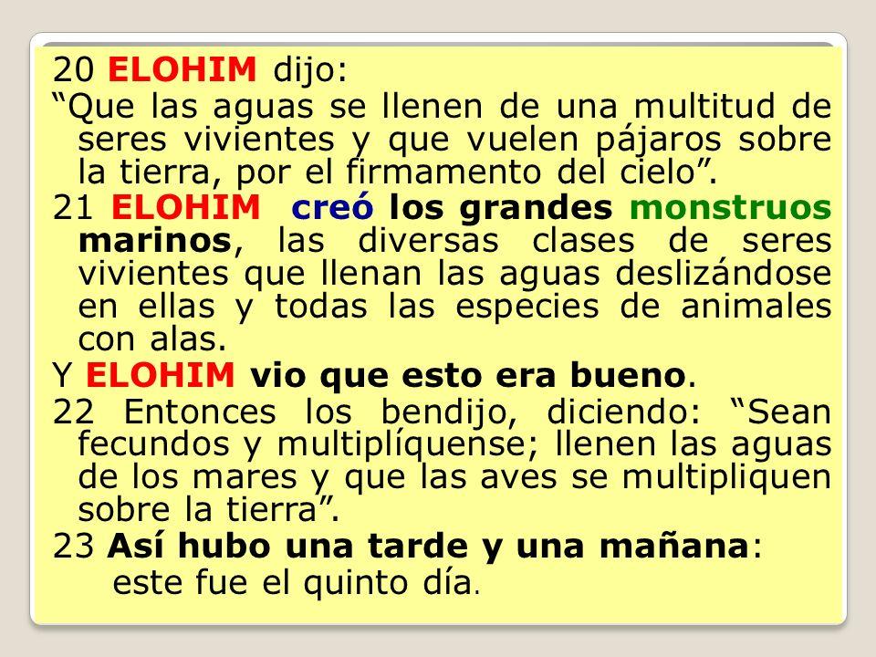 20 ELOHIM dijo: Que las aguas se llenen de una multitud de seres vivientes y que vuelen pájaros sobre la tierra, por el firmamento del cielo. 21 ELOHI