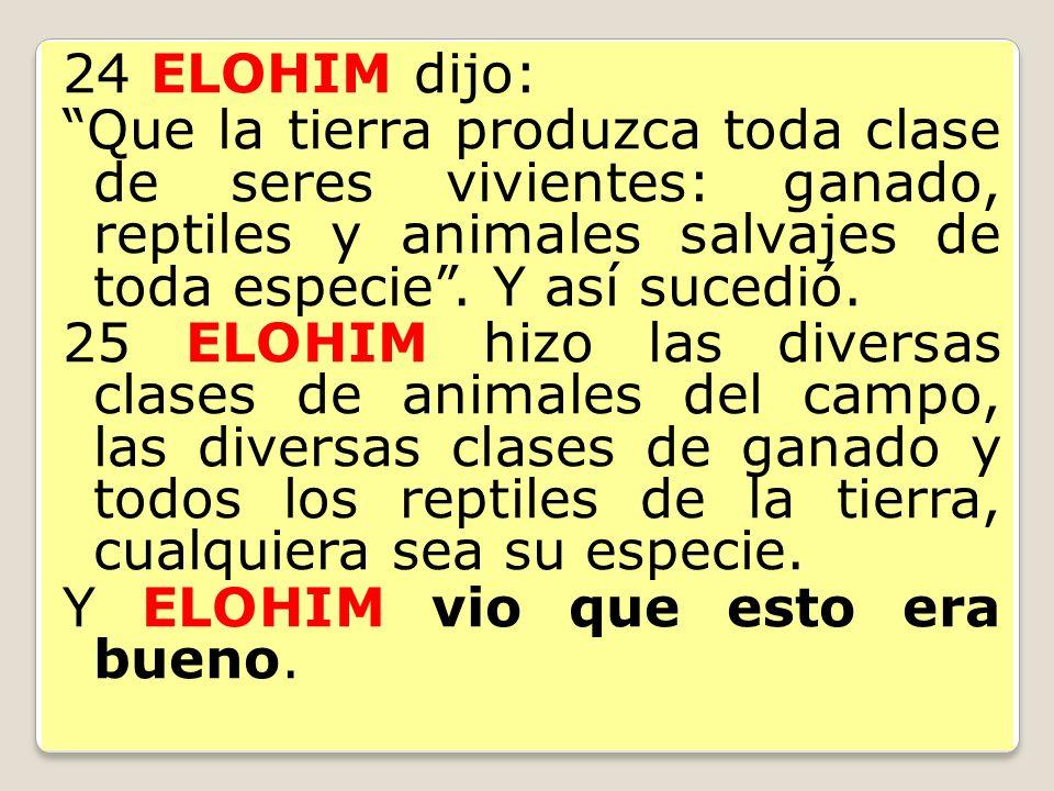 24 ELOHIM dijo: Que la tierra produzca toda clase de seres vivientes: ganado, reptiles y animales salvajes de toda especie. Y así sucedió. 25 ELOHIM h