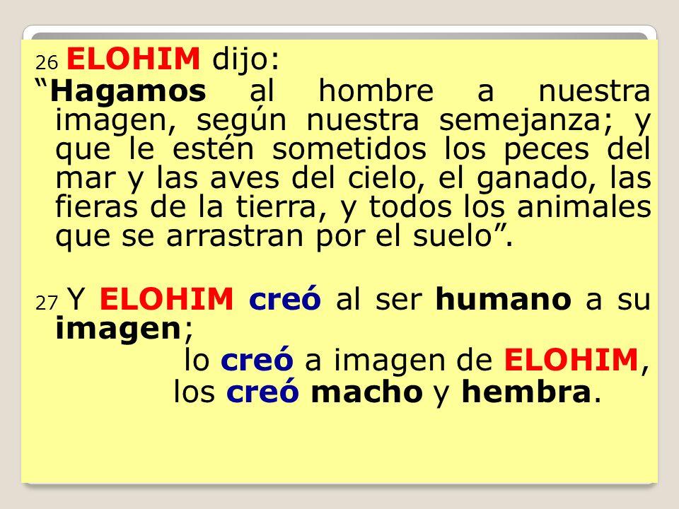 26 ELOHIM dijo: Hagamos al hombre a nuestra imagen, según nuestra semejanza; y que le estén sometidos los peces del mar y las aves del cielo, el ganad