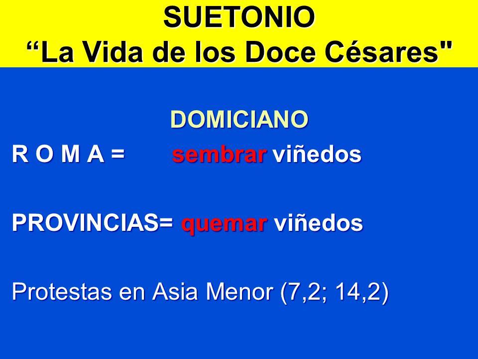 SUETONIO La Vida de los Doce Césares DOMICIANO R O M A = sembrar viñedos R O M A = sembrar viñedos PROVINCIAS= quemar viñedos PROVINCIAS= quemar viñedos Protestas en Asia Menor (7,2; 14,2) Protestas en Asia Menor (7,2; 14,2)