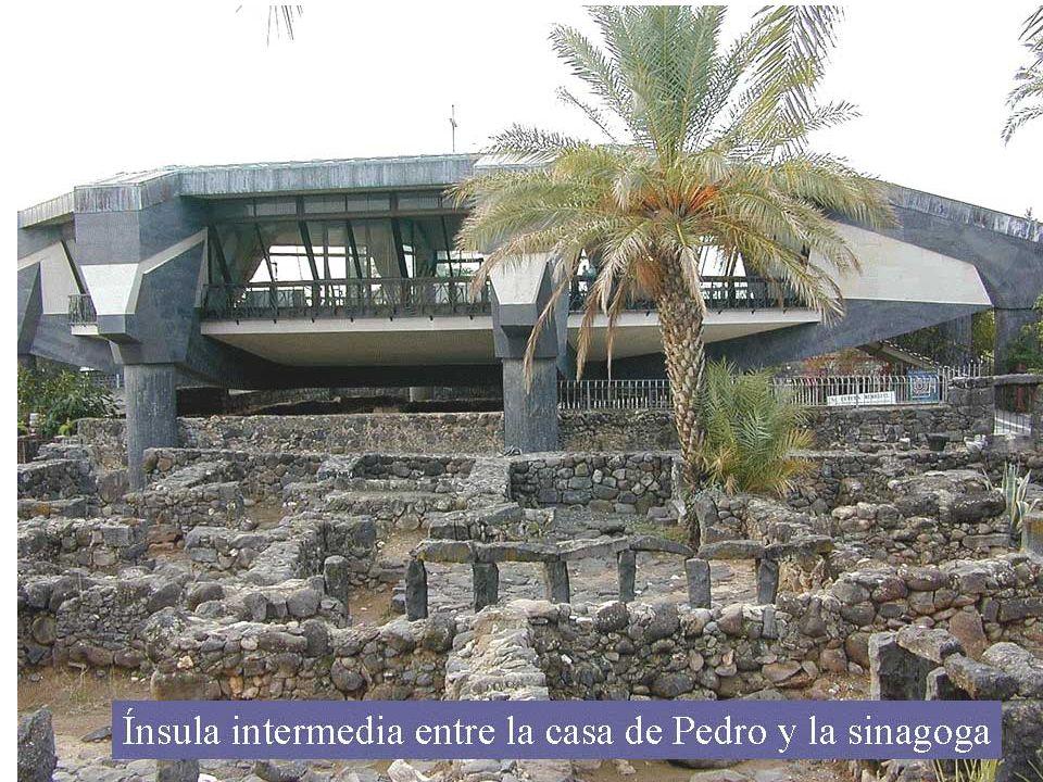 29 Cuando salió de la sinagoga se fue con Santiago y Juan a casa de Simón y Andrés.