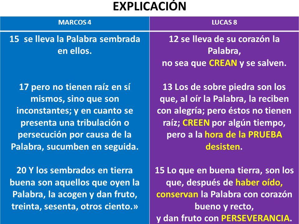 EXPLICACIÓN MARCOS 4LUCAS 8 15 se lleva la Palabra sembrada en ellos. 17 pero no tienen raíz en sí mismos, sino que son inconstantes; y en cuanto se p