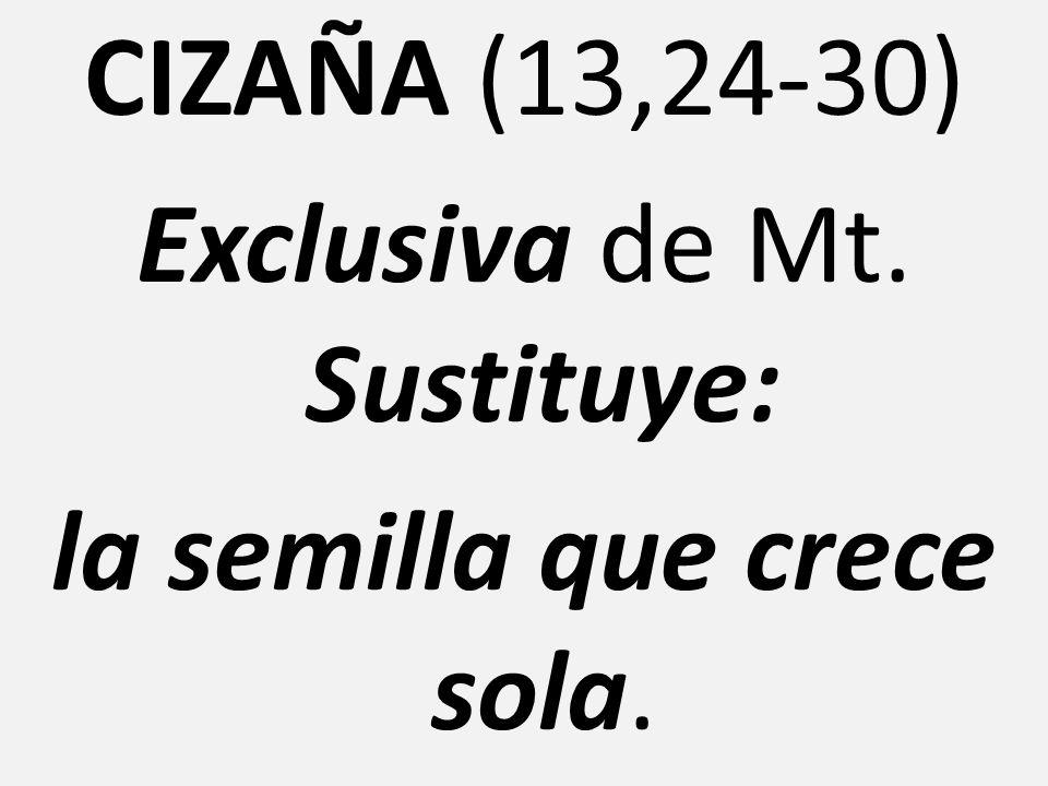 CIZAÑA (13,24-30) Exclusiva de Mt. Sustituye: la semilla que crece sola.
