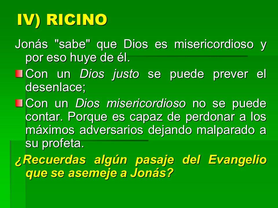 IV) RICINO Jonás