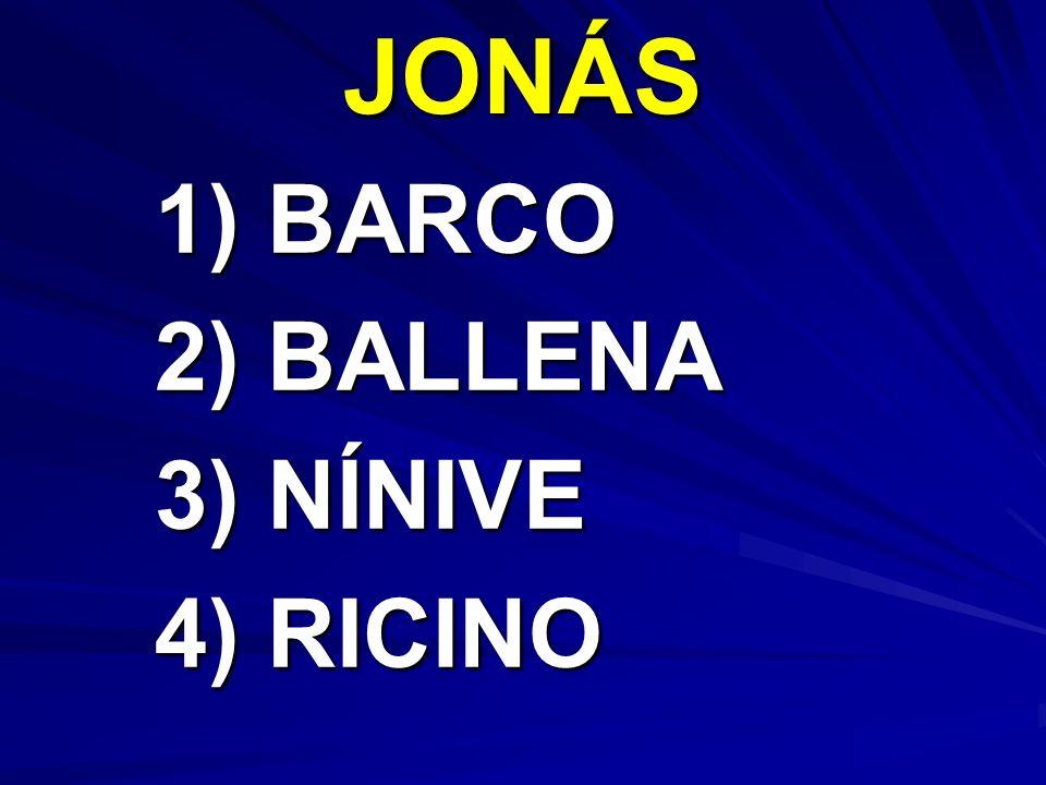 JONÁS 1) BARCO 1) BARCO 2) BALLENA 2) BALLENA 3) NÍNIVE 3) NÍNIVE 4) RICINO 4) RICINO