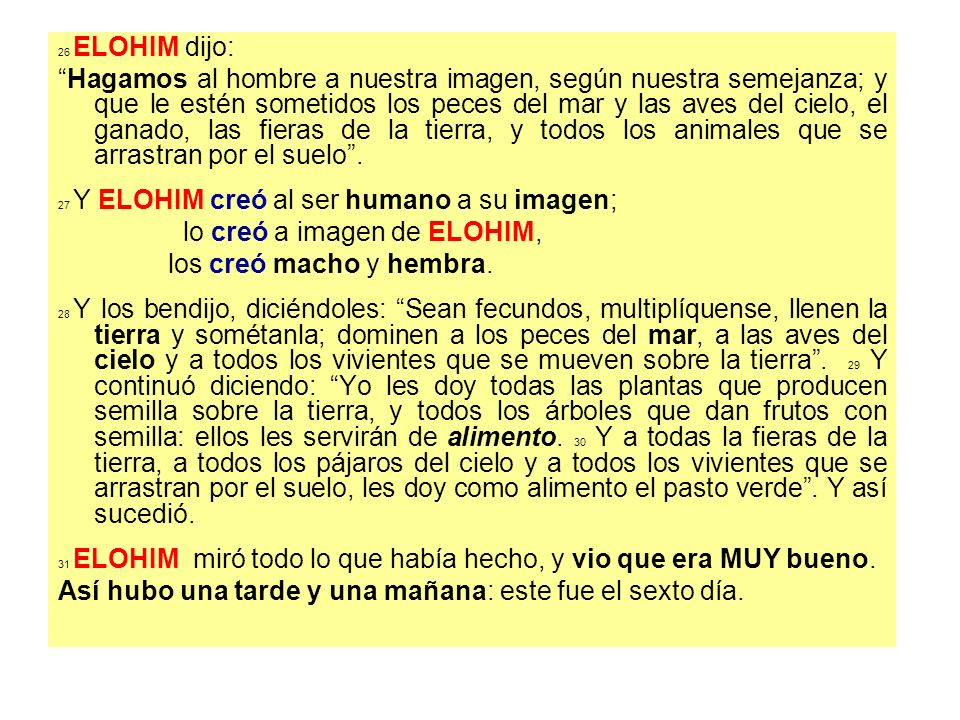 Momento Teológico LIBRO de los TOLEDOTH Nexo: 2,4a; 6,9; 10,1.32; 11,10.27.