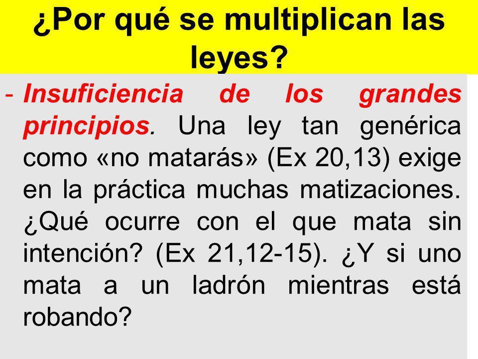 ¿Por qué se multiplican las leyes.-Insuficiencia de los grandes principios.