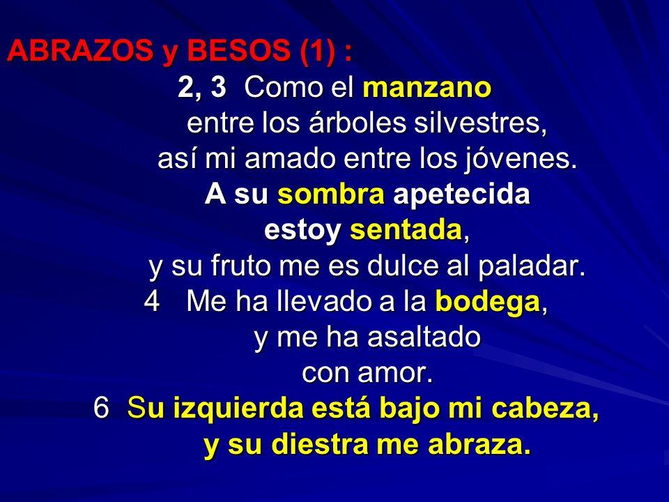 ABRAZOS y BESOS (1) : 2, 3 Como el manzano entre los árboles silvestres, entre los árboles silvestres, así mi amado entre los jóvenes. así mi amado en