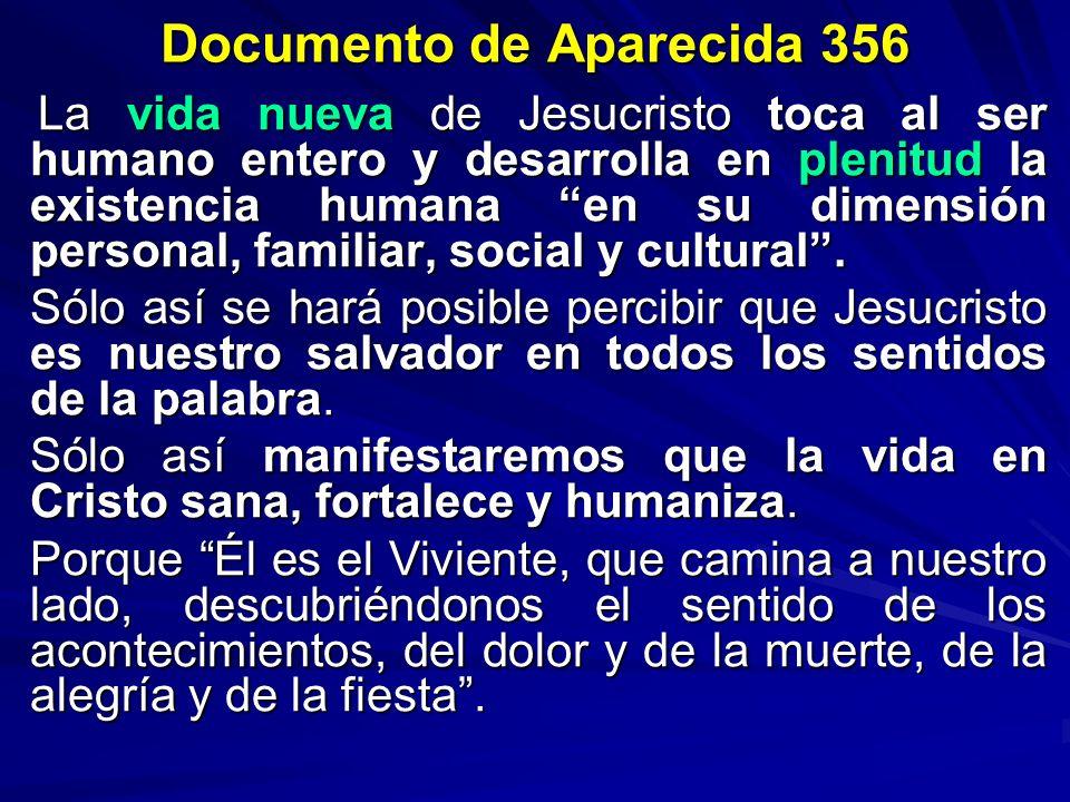 Documento de Aparecida 356 La vida nueva de Jesucristo toca al ser humano entero y desarrolla en plenitud la existencia humana en su dimensión persona