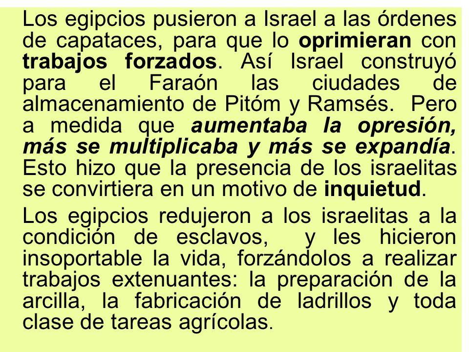 Los egipcios pusieron a Israel a las órdenes de capataces, para que lo oprimieran con trabajos forzados. Así Israel construyó para el Faraón las ciuda