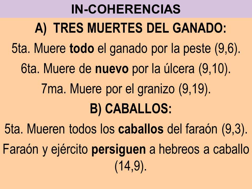 IN-COHERENCIAS A) TRES MUERTES DEL GANADO: 5ta. Muere todo el ganado por la peste (9,6). 6ta. Muere de nuevo por la úlcera (9,10). 7ma. Muere por el g