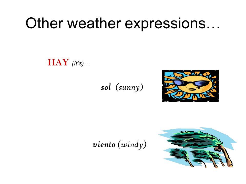 ¿Qué piensan Ustedes? HACE… buen tiempo calor fresco mal tiempo sol viento? ¿Qué tiempo hace hoy?